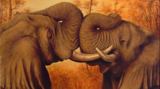Les 6 aveugles : le débat sur l'éléphant